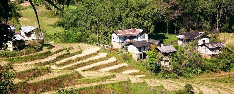 Wandern Sie mit uns über Reisfelder durch Ureinwohnerdörfer in Sikkim