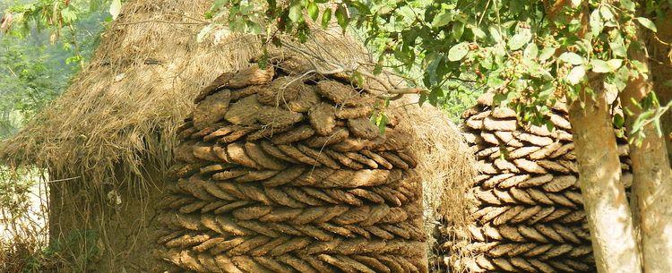 Ländliches Indien bei Agra getrocknete Kuhfladen