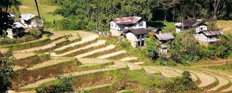 Terrassierte Reisfelder Bamboo Retreat Sikkim