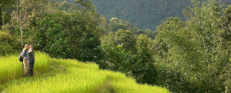 Individualreise Wandern und Kultur Sikkim Bamboo Retreat