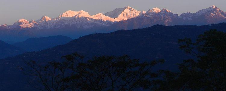 Khangchenjonga Blick von Teegarten Darjeeling
