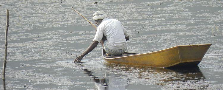 Fischer auf See in Madhya Pradesh