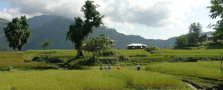 Kalimpong Samthar Reisfelder
