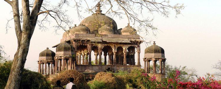 Verbinden Sie Ihre Rajasthan-Reise mit Kultur & Nationalparkbesuchen