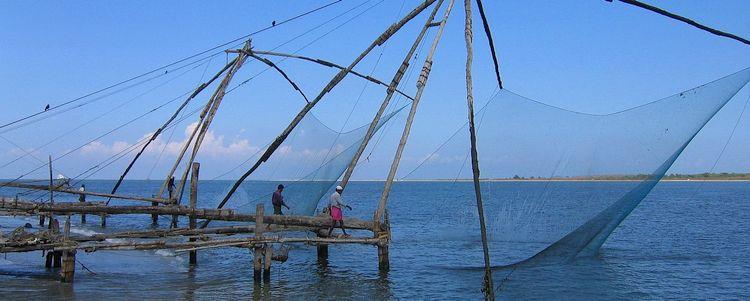 Kerala Chinesische Fischnetze