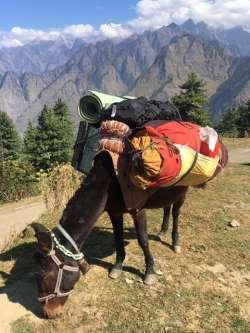 A Glimpse of Uttarakhand
