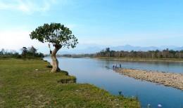A Glimpse of Assam